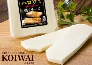小岩井農場フレッシュチーズ「ハロウミ」100g×3個(ハルーミチーズ)
