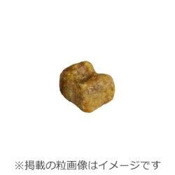ニュートロナチュラルチョイス超小型犬用シニア犬用チキン&玄米2kg【ドッグフード】【5250円以上で送料無料】【あす楽対応】【即納可】