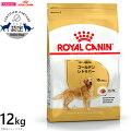 ロイヤルカナンドッグフードゴールデンレトリバー成犬・高齢犬幼12kg