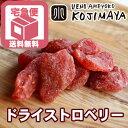 送料無料 いちごの郷の苺使用 ドライいちご 1kgドライ苺 ドライイチゴ ドライストロベリー