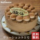チョコレートケーキ【ガトーショコラ 5号(4〜6名)】送料無料 誕生日ケーキ バースデーケーキ 小島屋乳業製菓 新宿kojimaya