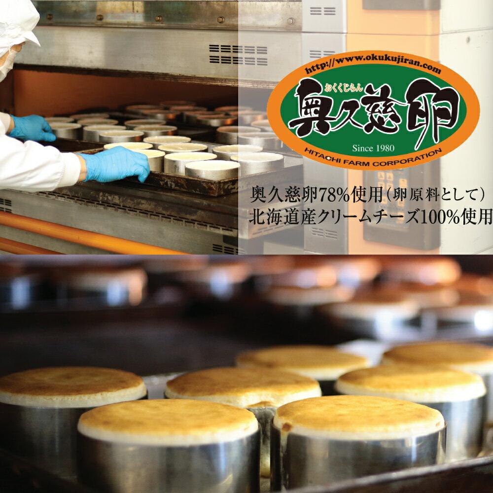 チーズケーキ【とろける2層のチーズケーキ(直径11.5cm)】送料無料ベイクドチーズケーキバースデーケーキ誕生日ケーキ小島屋乳業製菓新宿Kojimaya