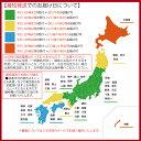 【ストロベリーアイス 果肉入り2L】業務用2Lアイス 小島屋乳業製菓 新宿Kojimaya 3