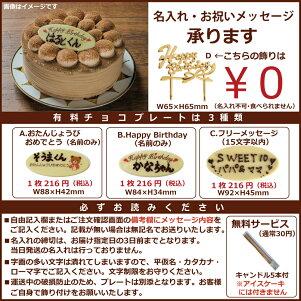 小島屋乳業製菓 新宿Kojimaya アイスケーキ【アイスケーキ ストロベリーチーズパイ4号】アイスデコレーション 送料無料