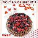 ★NEW★【送料込】いろいろベリーの『ショコラ・バスクチーズ