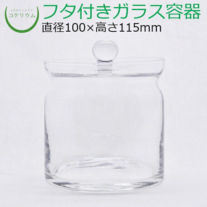 コケリウムガラス容器 モダン(フタ付)