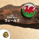 ウェールズ国旗ガラスピンズ