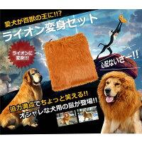 犬用ライオン変身グッズネックウォーマー(sb)【送料無料】-画像2