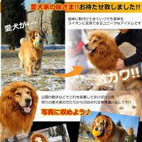 犬用ライオン変身グッズネックウォーマー(sb)【送料無料】-画像3