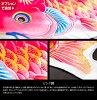 鯉のぼりベランダ用に最適なパールトーン加工の高級鯉「天に轟く雷神鯉神鳴鯉-KAMUI-2m3色基本セット」ベランダに最適マンションに最適コーポに最適一戸建てに最適!選べる金具沢山!ベランダ鯉