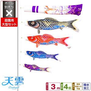 对于花园Koinobori Koinobori更喜欢特殊的鲤鱼Kotenbori [Conrail] CONTRAIL / Tenkumo Koi 3m大套杆单独出售