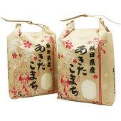 あきたこまち10kg 5kg×2袋 令和元年産あきたこまち 一等米 厳選されたおいしいお米【無洗米】