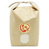 もち米秋田県産きぬのはだ3kg米びつ当番【天鷹唐辛子】プレゼント付き