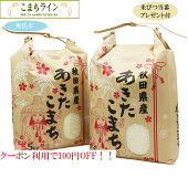 【無洗米】秋田県産あきたこまち10kg5kg×2袋令和2年産一等米厳選されたおいしいお米米びつ当番【天鷹唐辛子】プレゼント付き