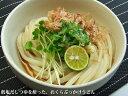 麺の塩分たったの57mg!驚きの超低塩うどん讃岐風ソフト麺です。妊婦さん、乳幼児、塩分制限の...