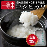 【30年度産・送料無料!(一部地域を除く)】減農薬 コシヒカリ・30kg・玄米