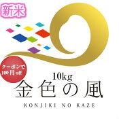 新米29年5kg岩手県産「金色の風」5kg(送料無料】お米米5kg送料無料