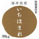 いちほまれ 30kg 特別栽培米 特a 福井県産 新米 おも...