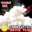 【29年産】千葉県産あきたこまち玄米20kg(10kg×2袋...