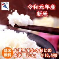 【29年産】千葉県産ミルキークイーンつきたて25kg(5kg×5)数に限りがあります♪送料無料♪※送料無料地域に除外があります※北海道・九州:+600円