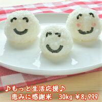 【送料無料!】生活応援米めざましごはん10kg(5kg×2)北海道・沖縄・九州・四国・他島しょは、別途送料¥600かかります