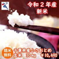 【29年産】千葉県産ふさおとめ玄米20kg(10kg×2)送料無料♪精米無料♪小分けも無料♪※送料無料地域に除外があります※北海道・九州:+600円玄米30kg商品の代替品です。