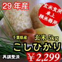 【29年産】千葉県産コシヒカリ 玄米5kg送料無料♪精米無料♪※送料無...