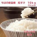 令和3年産 新米 ちばの新品種 粒すけ 新登場 無洗米10k