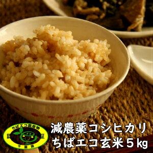 令和2年産  ちばエコ 減農薬コシヒカリ玄米5kg 数量   本州・四国  #販路多様化 対策事業  コンビニ受取対応商品