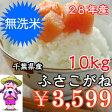 無洗米ふさこがね 10kg(5kg×2)【28年産】おいしい♪手間なし♪簡単♪※送料無料地域に除外があります※北海道・九州:+400円