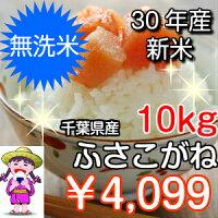 25年産新米千葉県産ふさこがね5kg無洗米
