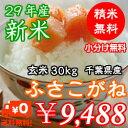 【29年産】千葉県産ふさこがね玄米30kg(10kg×3)無料で小分け♪精米無料♪※送料無料地域に除外があります※北海道・九州:+600円