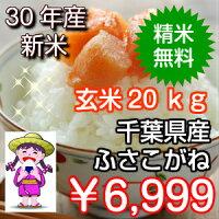 精米無料♪送料無料♪【千葉県産】ふさこがね玄米30kg