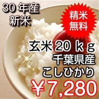 25年産新米入荷【送料無料!】【精米無料】あんしん玄米こしひかり