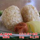 【30年産】千葉県産コシヒカリ 玄米5kg送料無料♪精米無料
