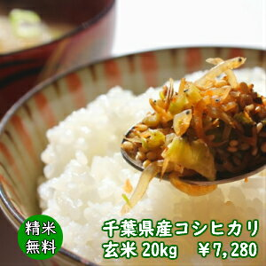 【30年産】千葉県産 コシヒカリ玄米20kg(10kg×2袋)♪精米無料♪小分けも無料♪※地域に除外があります※北海道・九州:+600円