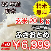 ちばの味ふさおとめ玄米30kg