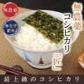 無農薬米1