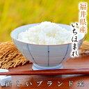 『キャッシュレス5%還元』いちほまれ福井県 令和の新米福井の新しいお米白米 15kg米・食味鑑定士認定米福井県の中でも特に美味しいと言われる奥越産のいちほまれです。
