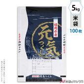 米袋mn009105ta-100