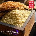楽天市場の中で最安値!!幻の米!!七夕コシヒカリ10kg