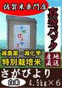 【29年産】【白米27kg 真空パック】【特別栽培米】さがび...
