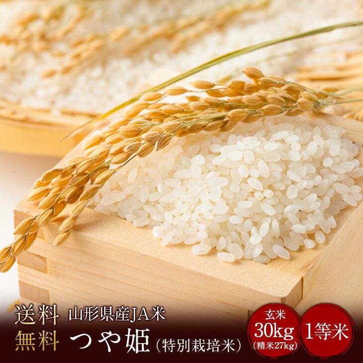 令和元年度産 山形県JA米つや姫 1等米(特別栽...の商品画像