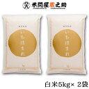 いちほまれ 福井県 特別栽培米 白米 10kg 元年産 送料無料(一部地域除く)