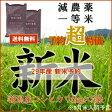 新米 29年産 送料無料 特別栽培米 新潟 コシヒカリ or 贅沢ブレンド「江戸の米蔵」一等米 新米5kg×2個(10kg) お選びいただけます。( 玄米 白米 お米 新米 29年度産 )