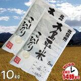 『木島平米』長野コシヒカリ10kgあす楽玄米・白米・3分搗き・7分搗き