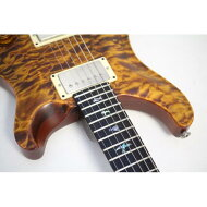 PAUL REED SMITH 59】09 DIRTY 100 FINISH