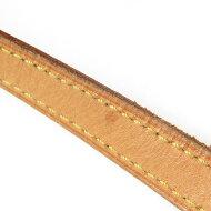 ルイヴィトン モノグラム トロター M51240