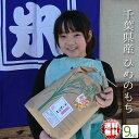 新米 29年産 もち米 10kg 送料無料 白米 (10kg) 千葉県産 ひめのもち 29年産