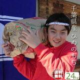 もち米 送料無料【地域限定 送料無料】千葉県産 ひめのもち 30年産 ヒメノモチ 精米無料 白米24kg